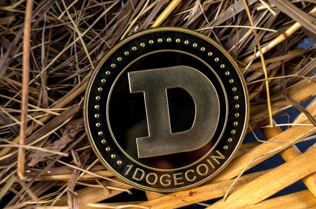 What to do and how to get Free Dogecoin in 2020?